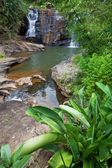 Waterfall on Sri Lanka — Stock fotografie