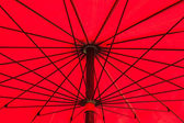 Red Umbrella — Stock Photo