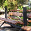 Wooden bench is in park - Stock Photo