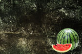 Watermeloen en grunge — Stockfoto