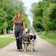 Happy girl walking with dogs — Stock Photo #11224826