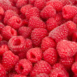 Sweet fresh raspberry fruit — ストック写真