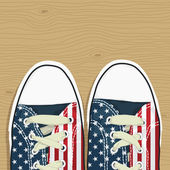 Usa shoes — Stock Vector