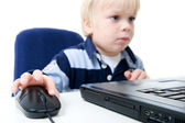 Young Boy Using Laptop — Stock Photo