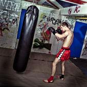 Boxing practise — Stock Photo