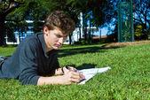 在公园里的家庭作业 — 图库照片