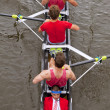 Coxed four — Stock Photo