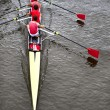 Coxed four from above — Foto Stock