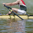 Stock Photo: Skiff rower