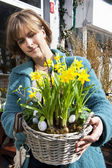 Basked with yellow daffodils — Stock Photo