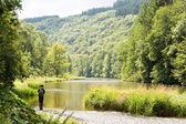Ardennes — Stock Photo