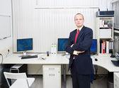 Analista aziendale — Foto Stock