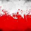 Poland flag — Stock Photo