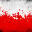 Poland flag — Stock Photo #10871665