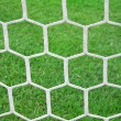 Soccer net — Stock Photo #11131054
