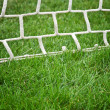Soccer net — Stock Photo #11560408