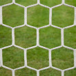 Soccer net — Stock Photo #11747539