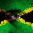 Stock Photo: Jamaican Flag on face