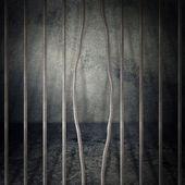 Vězeňská cela — Stock fotografie