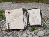 Abandoned old freezer - environmental damage, rubbish disposal c — Stock Photo