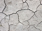 Baked and parched river bed - background — Stock Photo