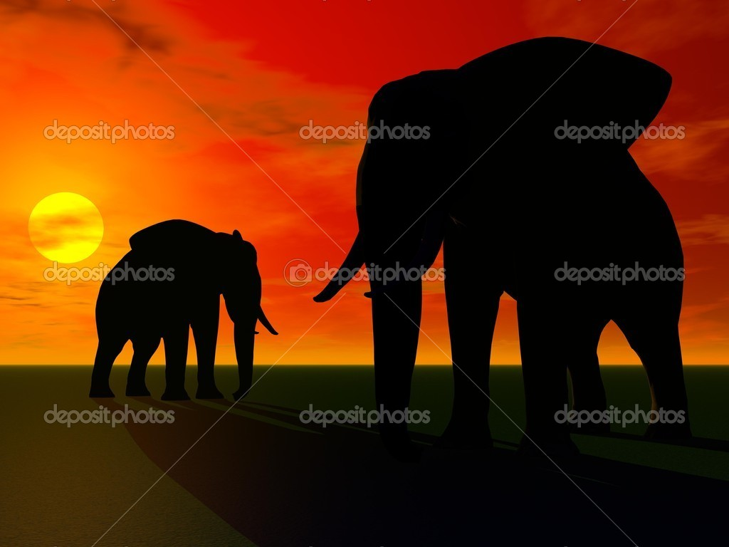 Elephants and sun  Stock Photo #12254150