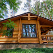Wooden chalet — Stock Photo #11095361