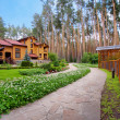 Stock Photo: Wooden mansion