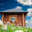 Small house on flowers meadow — Stock Photo