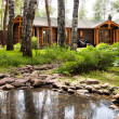 Wooden chalet in forest — Stock Photo