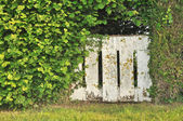 Dilapidated gate in vegetation — Stock Photo
