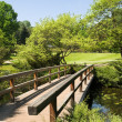 Wooden bridge in garden — Stock Photo