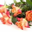 Five orange rose — Stock Photo