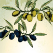 Retro style green and black olives — Stockvectorbeeld