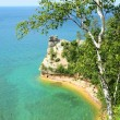 Birch Tree and Miners Castle at Pictured Rocks National Lakeshore — Stock Photo