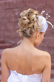 Back view of elegant wedding — Stock Photo