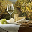 Royalty-Free Stock Photo: Cheese and Wine