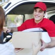 Postal delivery courier in a van delivering package - Foto Stock