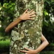 In love with nature: woman hugging a tree in the forest — Foto de Stock