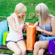 Two beautiful girl friends with shopping bags — Stock Photo #12332979