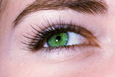 Green eye — Stockfoto