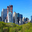 Royalty-Free Stock Photo: Central Park and Manhattan