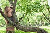 Krásná dívka u stromu — Stock fotografie
