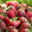 Stock Photo: Strawberry in grass