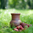 Stock Photo: Strawberry and jug in grass