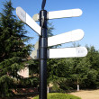 Blank Directional Sign Post — Stock Photo #10739780