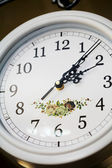 White clock — Stockfoto