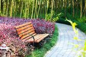 Dřevěné lavice — Stock fotografie