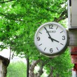 Clock with green trees in the background — Stock Photo