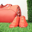 Foto Stock: Red luggage and shoes